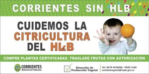 HLB-Banner