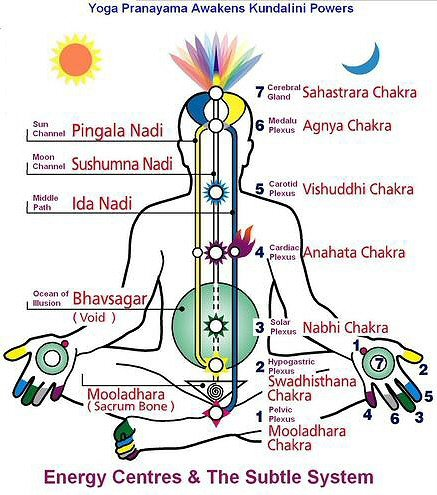 Energy-Systems-and-Chakras