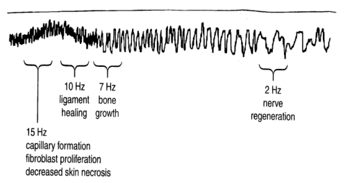 Fig 1 TT practitioner: biomagnetic recordings of ELF (extremely low frequency) from their hands and known healing effects of specific ELF frequencies