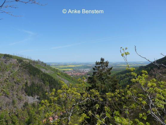 Blick vom Ilsestein ins nördliche Harzvorland