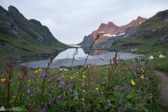 Sommernatt i Lofoten
