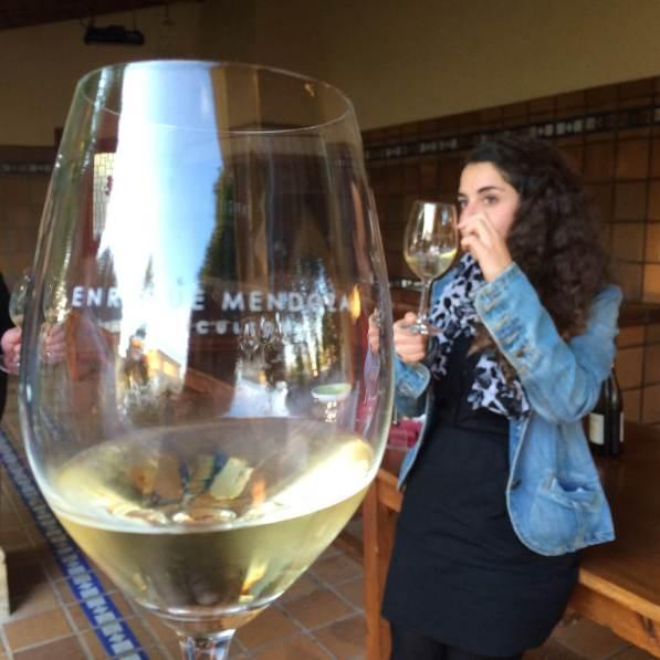 Vinsmaking hos Enrique Mendoza