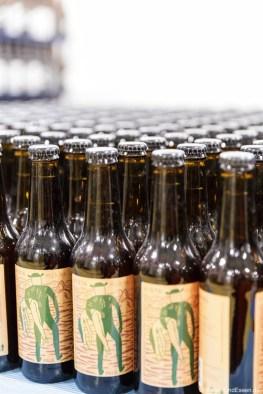 Vista Mikkeller Craft Beer