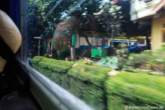 Fahrt vorbei an Häusern