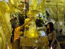 Yangoon: Shwedagon Pagode