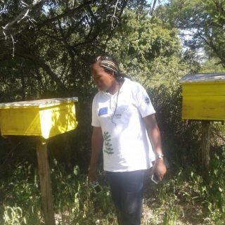 Cornela Orwa, in charge of bee keeping in Kitui and CEFA employee explains how the bee hives and managed.Picture:Fred Deya