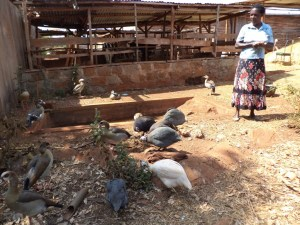 Teresia Maina with some of her ornamental birds that she has been keeping for years in Nyeri.Picture:Waikwa Maina