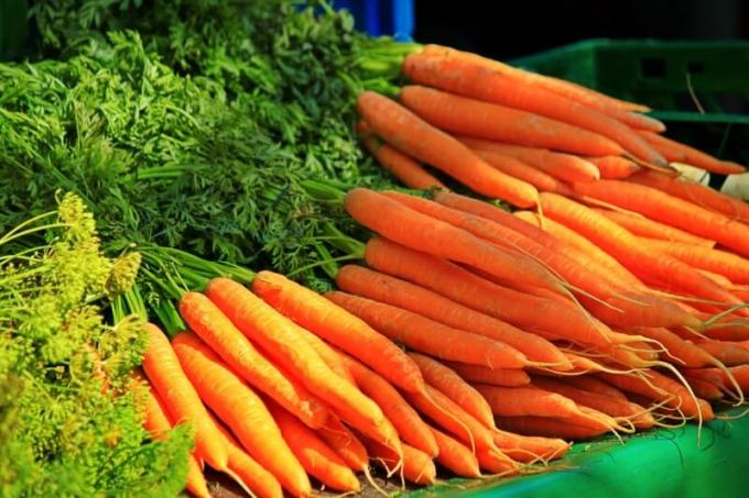 mencegah-diabetes-dengan-wortel