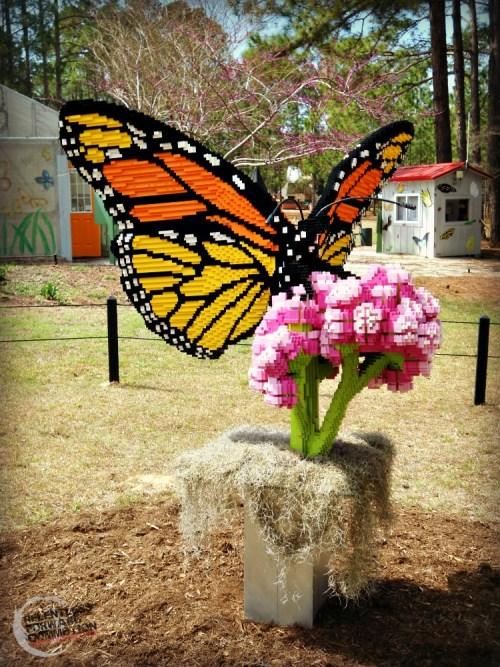 Butterfly lego Brookgreen Garden