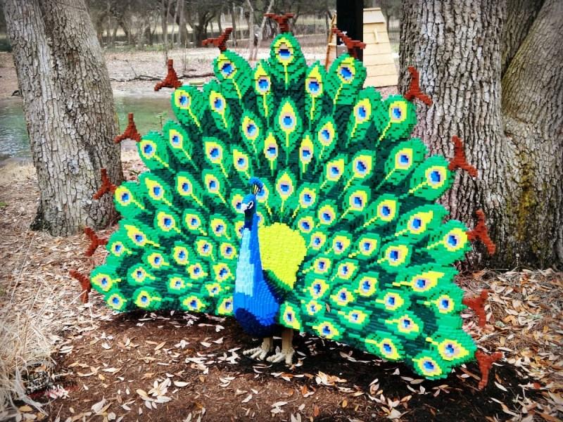 Peacock Legos Brookgreen Garden