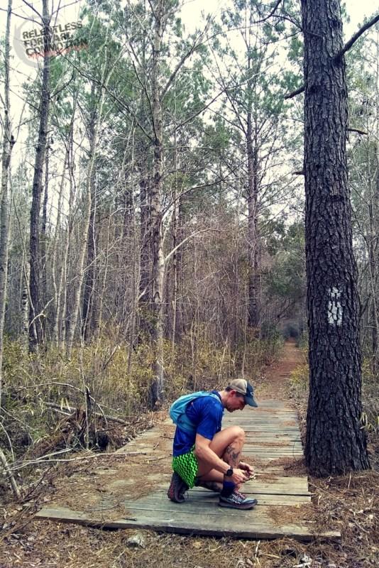 Palmetto Trail blaze