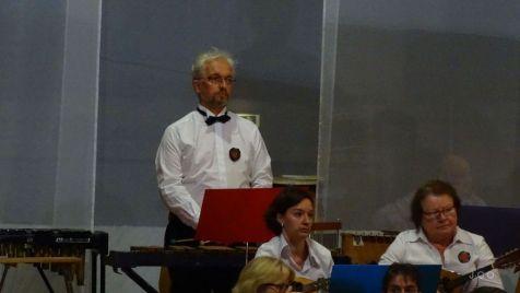 06 Orchestre Mandolines et Guitares Remiremont (4)