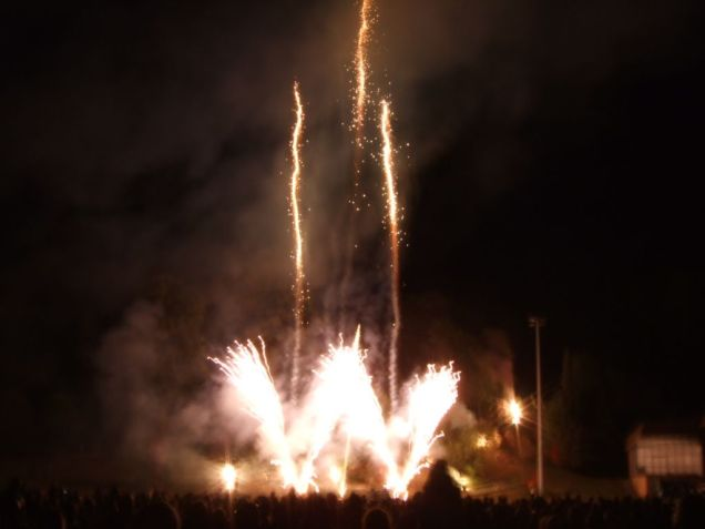 Feu d'artifice. (4)