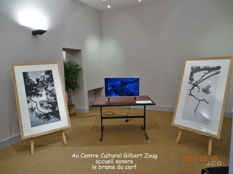 00 expo Centre Culturel