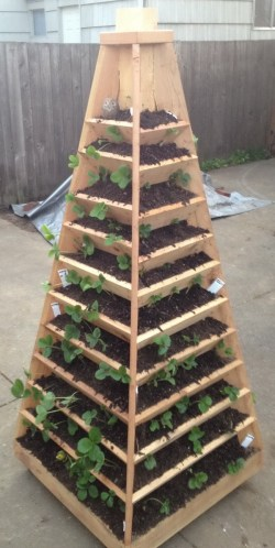 Top Your Next Diy Vertical Herb Garden Planter Box Vertical Herb Garden Plans Vertical Garden Pyramid How To Build A Vertical Garden Pyramid Tower