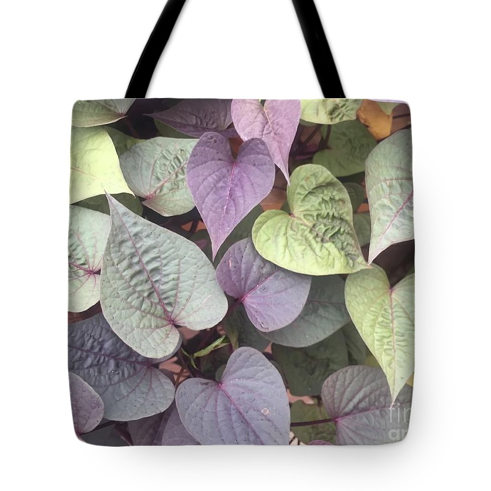 Distinctive Tote Bag Featuring Photograph Purple Red Flowers Heart Shaped Leaves Purple Flowers Green By Purple Sale By Jaimie Tuchman Heart Shaped Leaves Green Leaves Tote Bag houzz-03 Heart Shaped Leaves