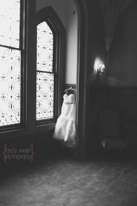 Atlanta Wedding Photographer - Callanwolde Fine Arts Center IMG_6280 copy