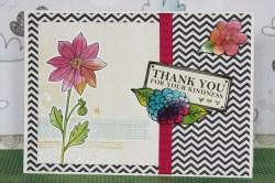 Amazing Teachers Free Teachers To Color Thank You Cards Supplies Teacher Cards Plz Thank You Cards
