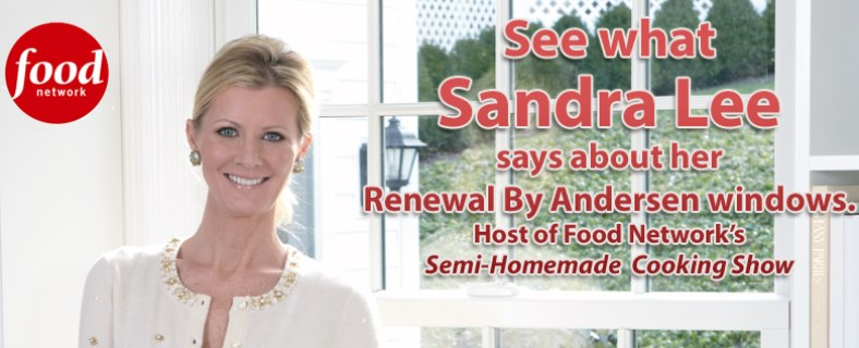 Sander Lee banner