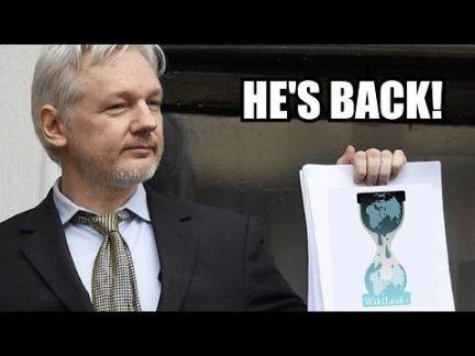 Assange McCain leak
