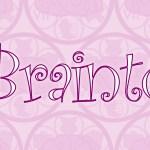 [:es]Logotipo de Braintown[:en]Braintown Logo