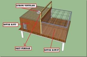 Kandang Box (Ayam Kampung Usia 1-20 hari)