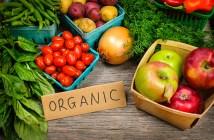 Manfaat Tanaman Organik Bagi Kesehatan