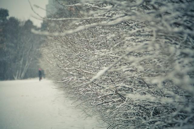 Суровый уральский май, Дмитрий Афонин, 2012