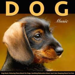 Small Crop Of Soothing Dog Music