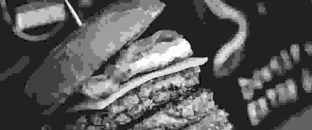 SAMPLE__double-beef-burger_low