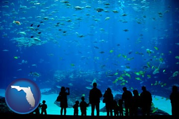 aquariums & supplies retailers and shops in the State of Florida