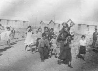 Le camp Joffre à Rivesaltes.