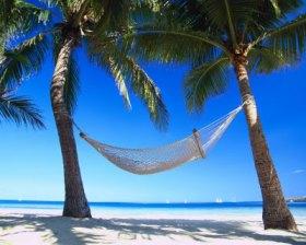 Hammock in paradise
