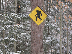 Image via Joe Shlabotnik