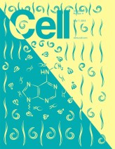 CELL_161_4.indd