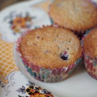 berry muffins + lemon glaze