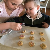 Sprinkle Cookies in the Thermomix