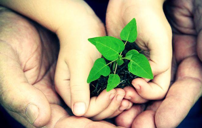 o-mundo-que-queremos-e28093-consulta-da-onu-para-um-futuro-sustentc3a1vel