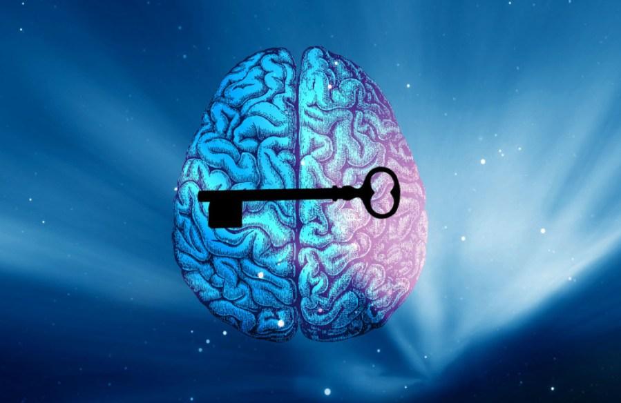 Potenciação Cerebral2 - imagem feita pelo Luis