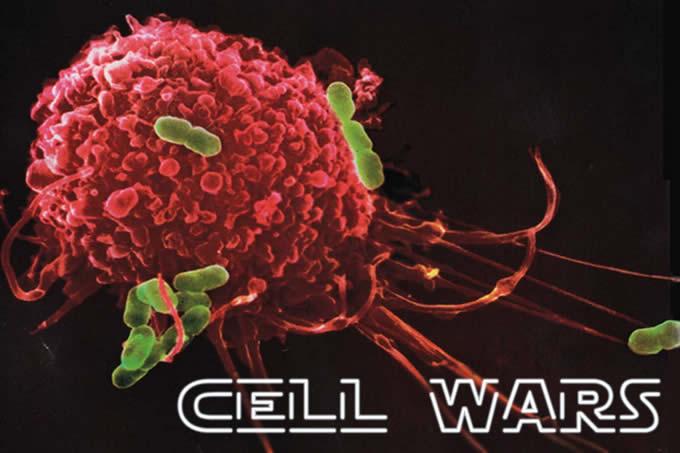 As bactérias contra-atacam