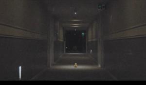 Screen Shot 2018-01-27 at 10.39.56 AM