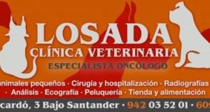 losada veterinaria