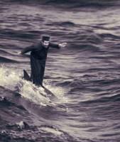 Milagro del delfín surfer.
