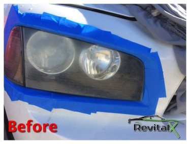 Before and After RevitalX 1 1
