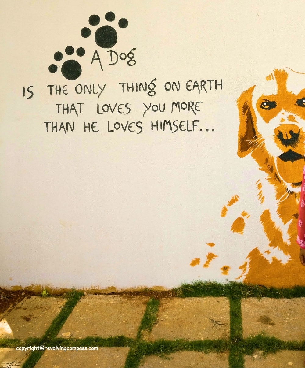 TherPUP dog cafe Bangalore