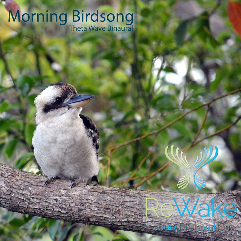 Morning-Birdsong-Binaural