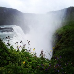 Should You Visit Iceland in the Summer?