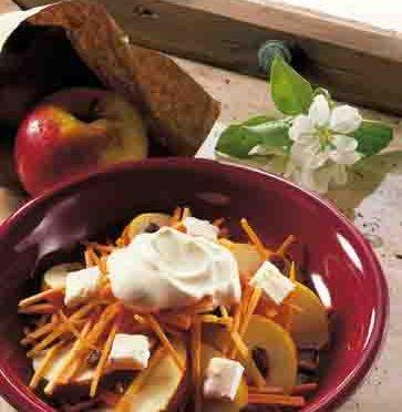 Apfel-Rezepte: Apfel-Möhren-Rohkost Foto: Wirths PR