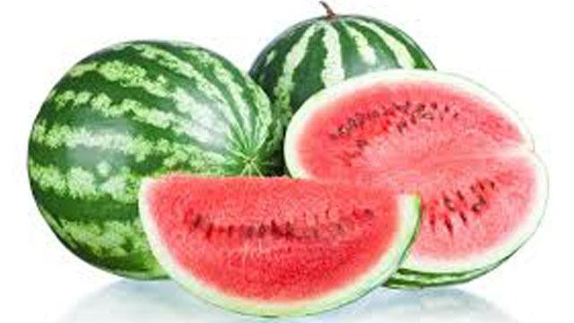 Watermelon236