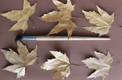 Leaves and Paint Brush